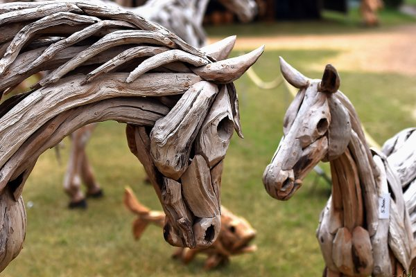 pVerd-event_Impression4_WM-der-jungen-Dressurpferde
