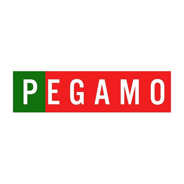 pVerd-event_kontakt_Pegamo